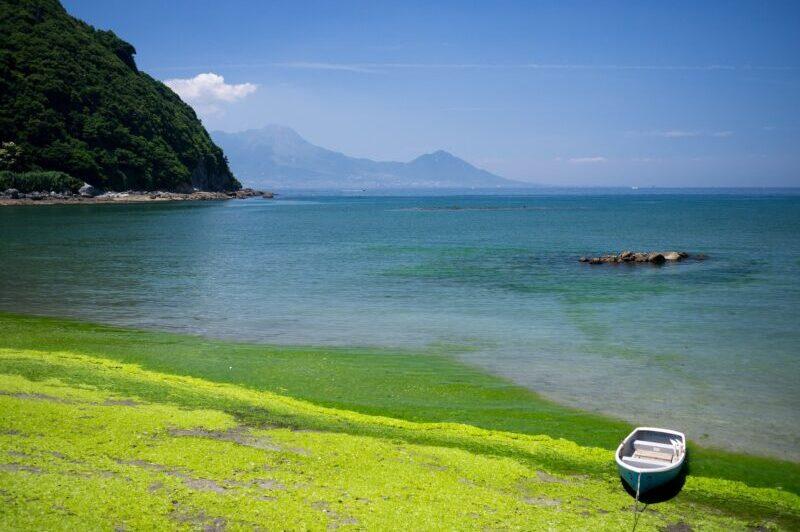 Kyushu Japán